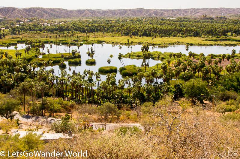 Santiago: Oasis in the Desert