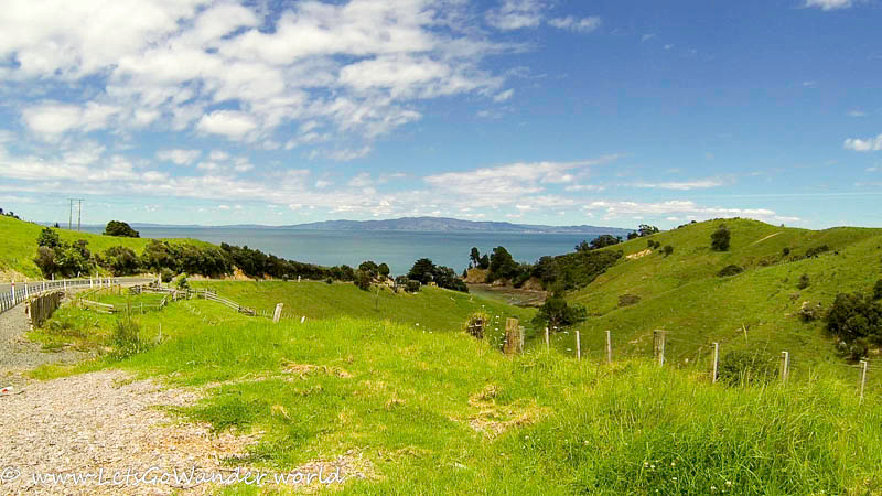 On the road from Thames to Coromandel Town