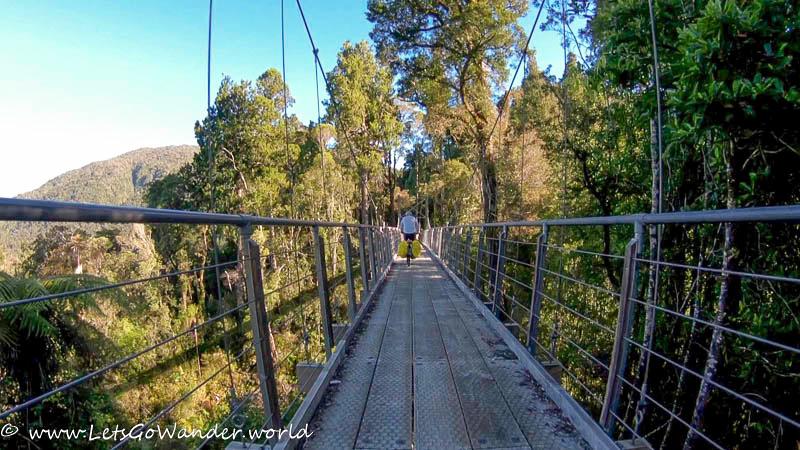 Swingbridge on the West Coast Wilderness trail