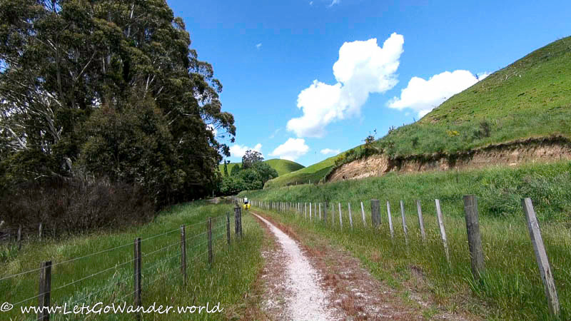 On the trail from Rotorua to Taupo