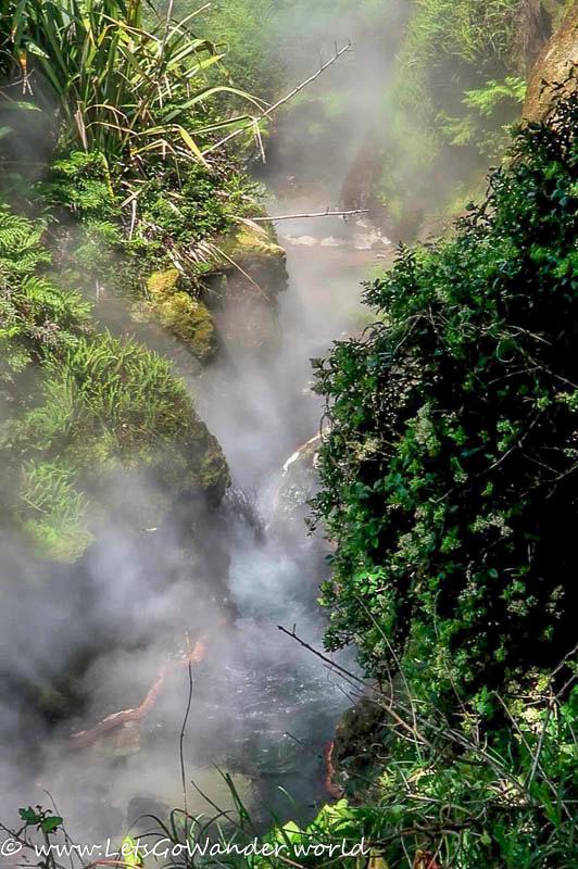 Waikite Thermal Springs